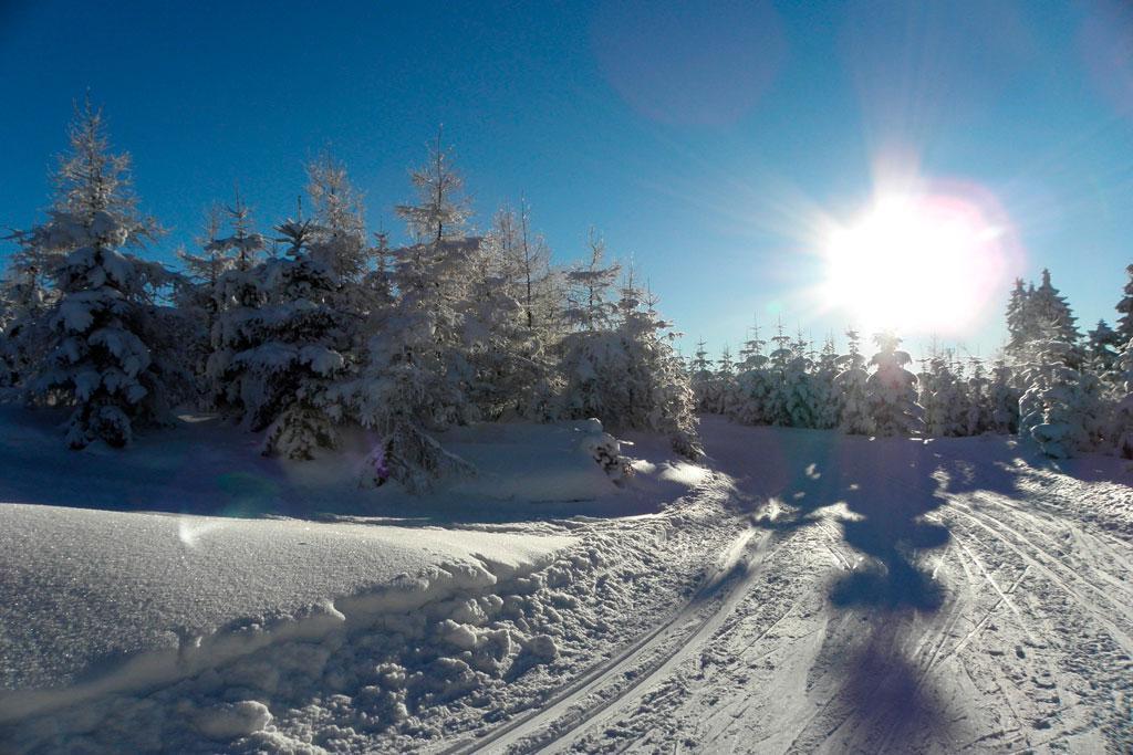 narciarstwo biegowe, Szklarska Poręba Jakuszyce