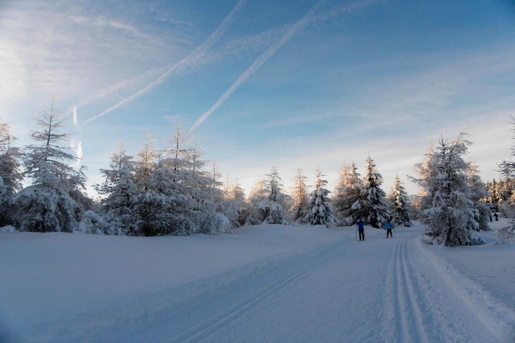 na narty biegowe, Jakuszyce, trasy Biegu Piastów