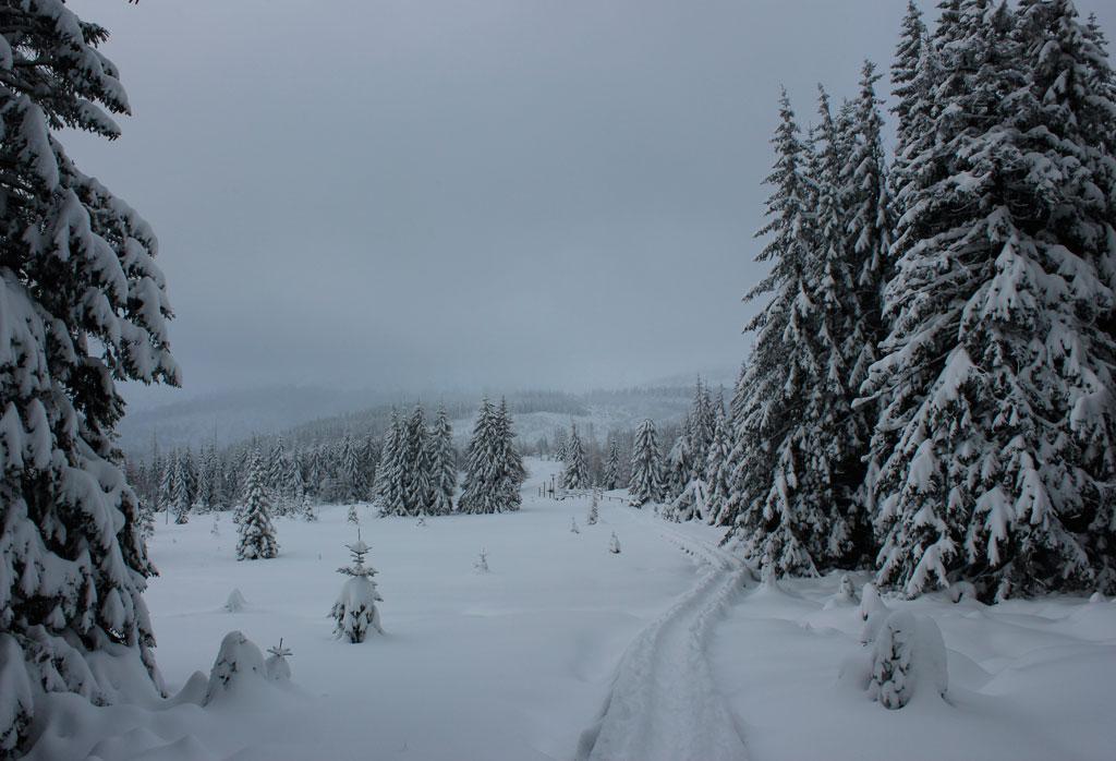 wycieczka w góry zimą, bajkowe piękno Karkonoszy