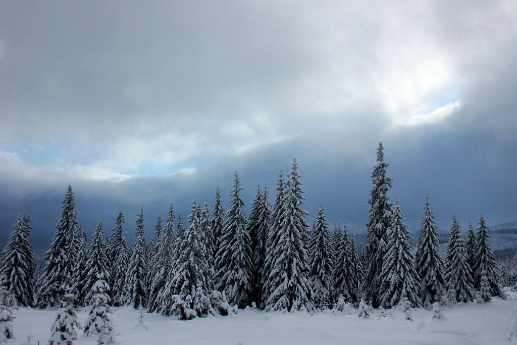 Karkonosze zimą, widok na kocioł Wielkiego Stawu