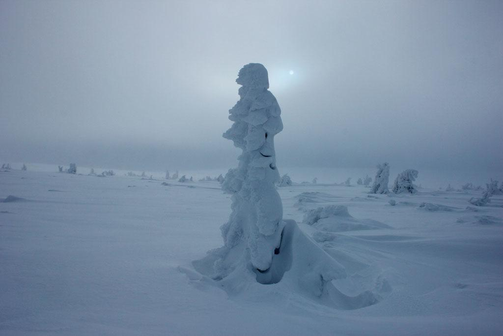 szadź na Równi pod Śnieżką, tundra zimą