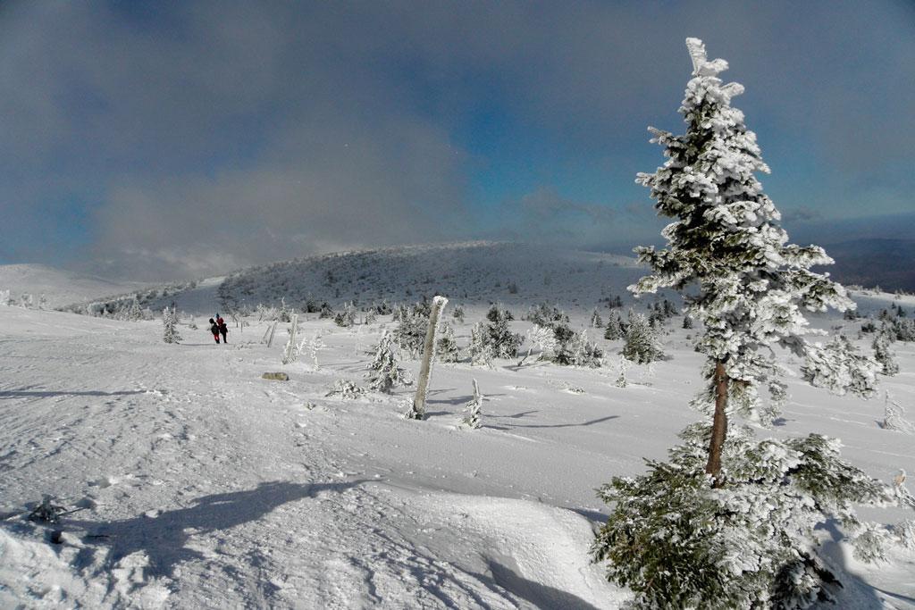Karkonosze. Alpejsko-arktyczna tundra zimą